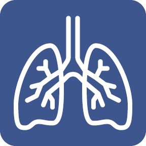 Topic_Icon_body__lung